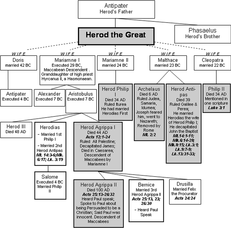 Babylonian Family Tree b Diagram Herod Family Tree