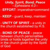 Unity of the Spirit from Ephesians