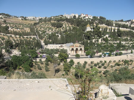Mount of Olives as seen from Jerusalem looking over the Kidron Valley