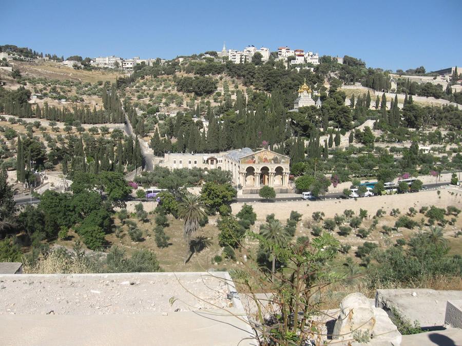 Mount Of Olives Jerusalem 101
